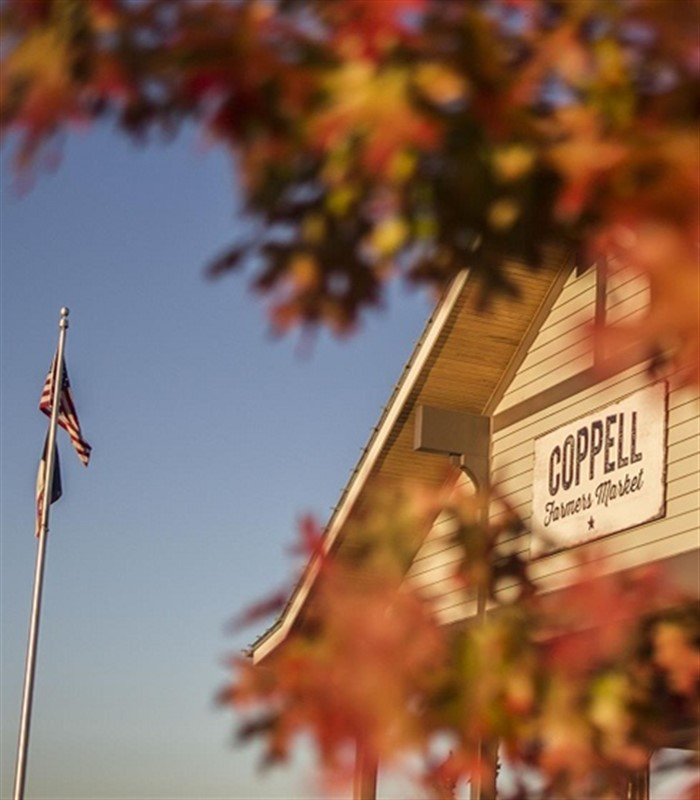 coppell resized